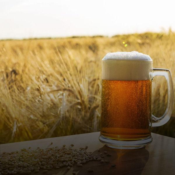 cerveja cura doenca_