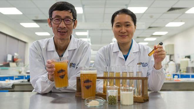 cerveja probiotica